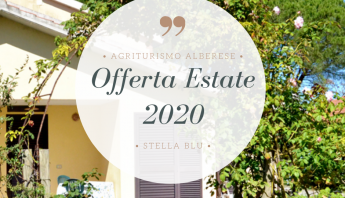 offerta estate 2020 stella blu